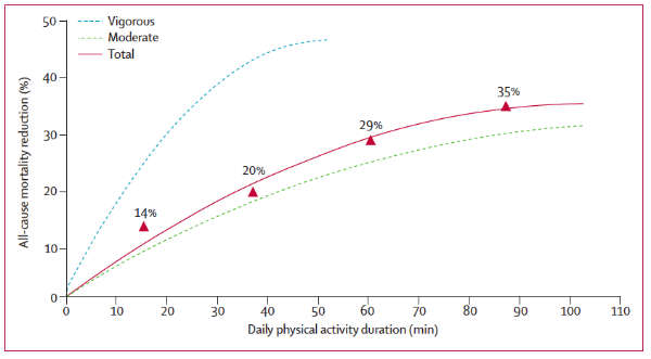 Figure 2: Daily physical activity duration and all-cause mortality reduction.  Increasing physical activity reduces your risk of dying prematurely, even at a moderate intensity (i.e., brisk walking) (  4  ).