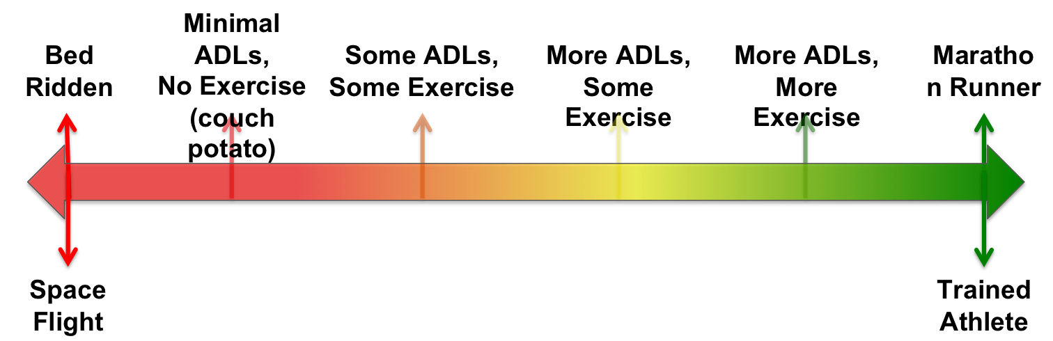 Exercise_Continuum_Figure_071015.png