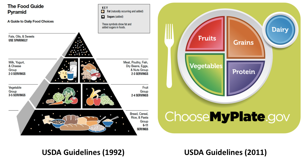 Food Guide Pyramid and MyPlate
