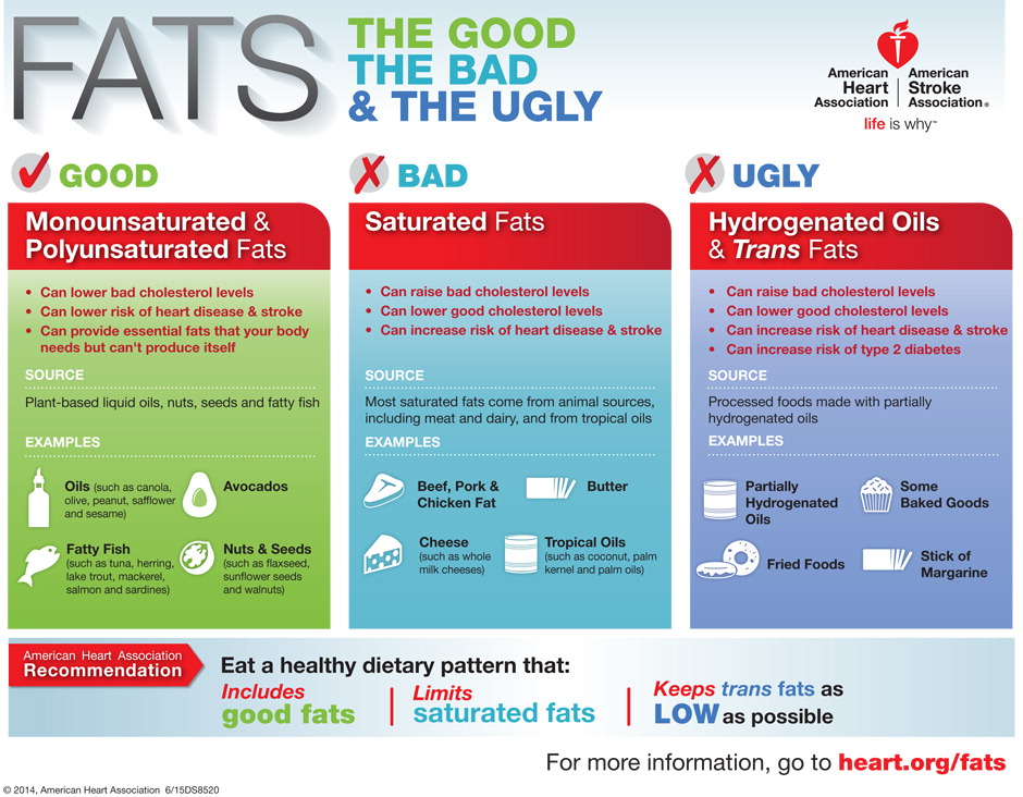 Figure 1. Fats: the Good, the Bad, and the Ugly.