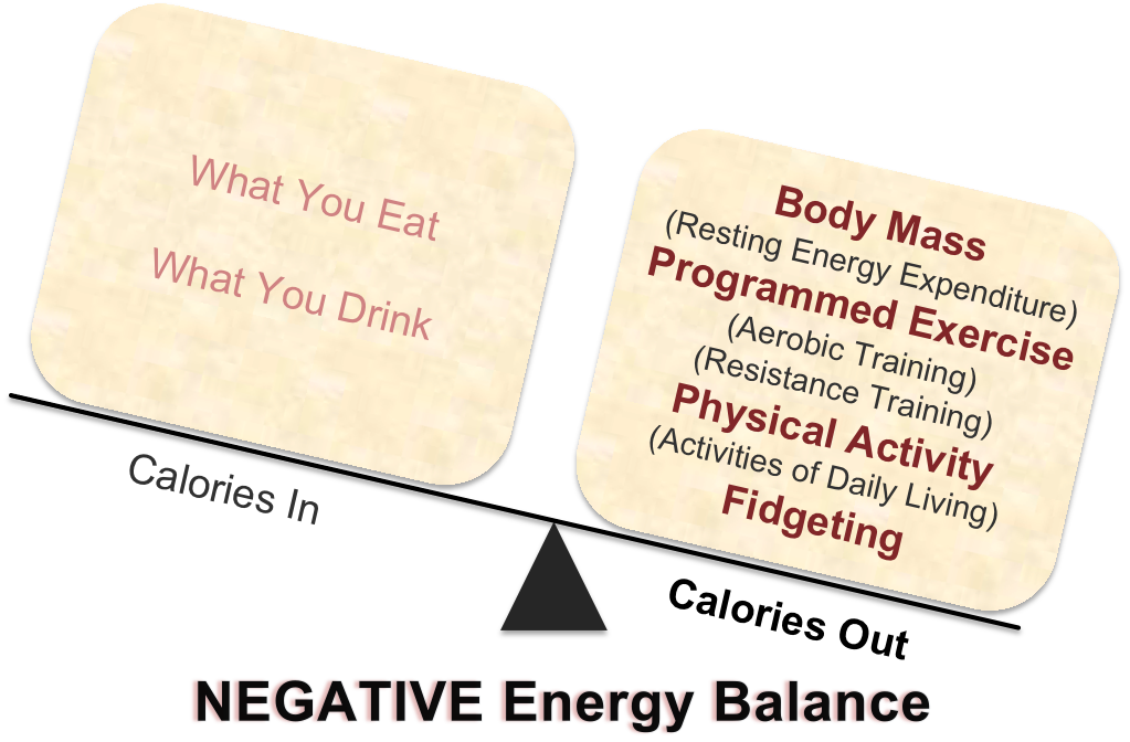 Figure 1. A Negative Energy Balance (more calories burned than taken in) is the key to weight loss.