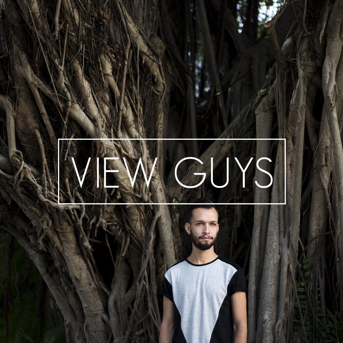VIEW GUYS.jpg