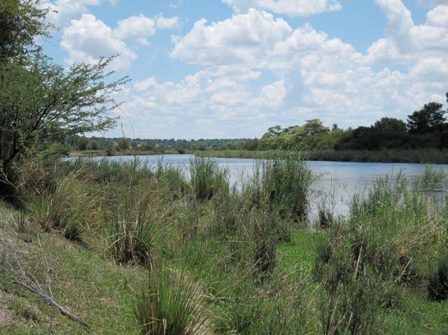 kavango_river.jpg