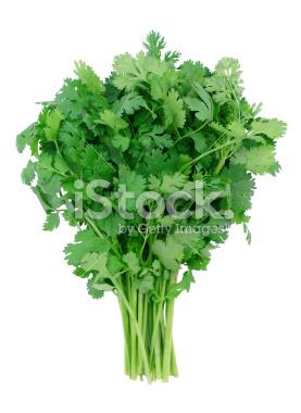 stock-photo-1929903-cilantro.jpg