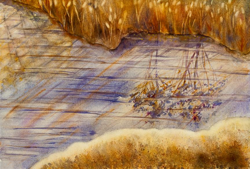 Cattails in Autumn