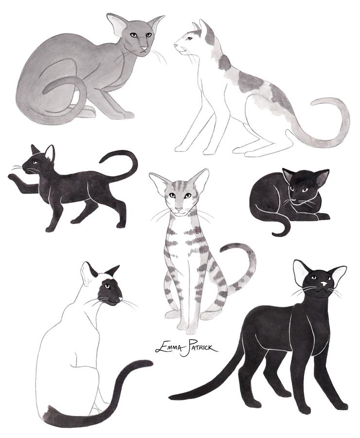 epatrick-inktober-cats.jpg