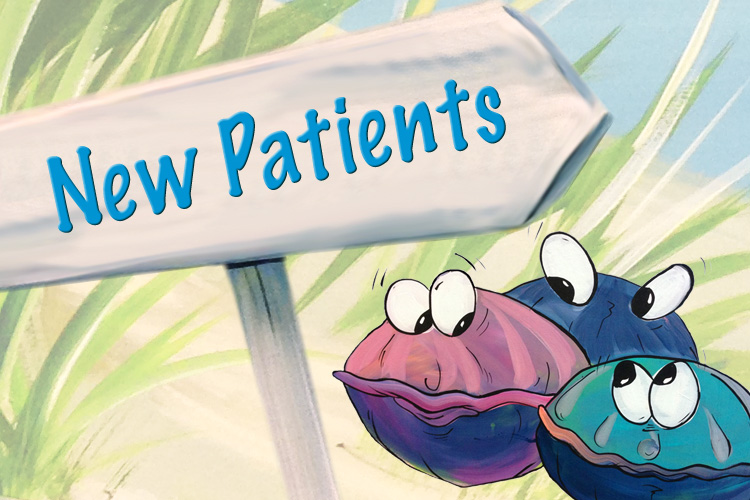 Decorative image of New Patient sign with clams from mural.