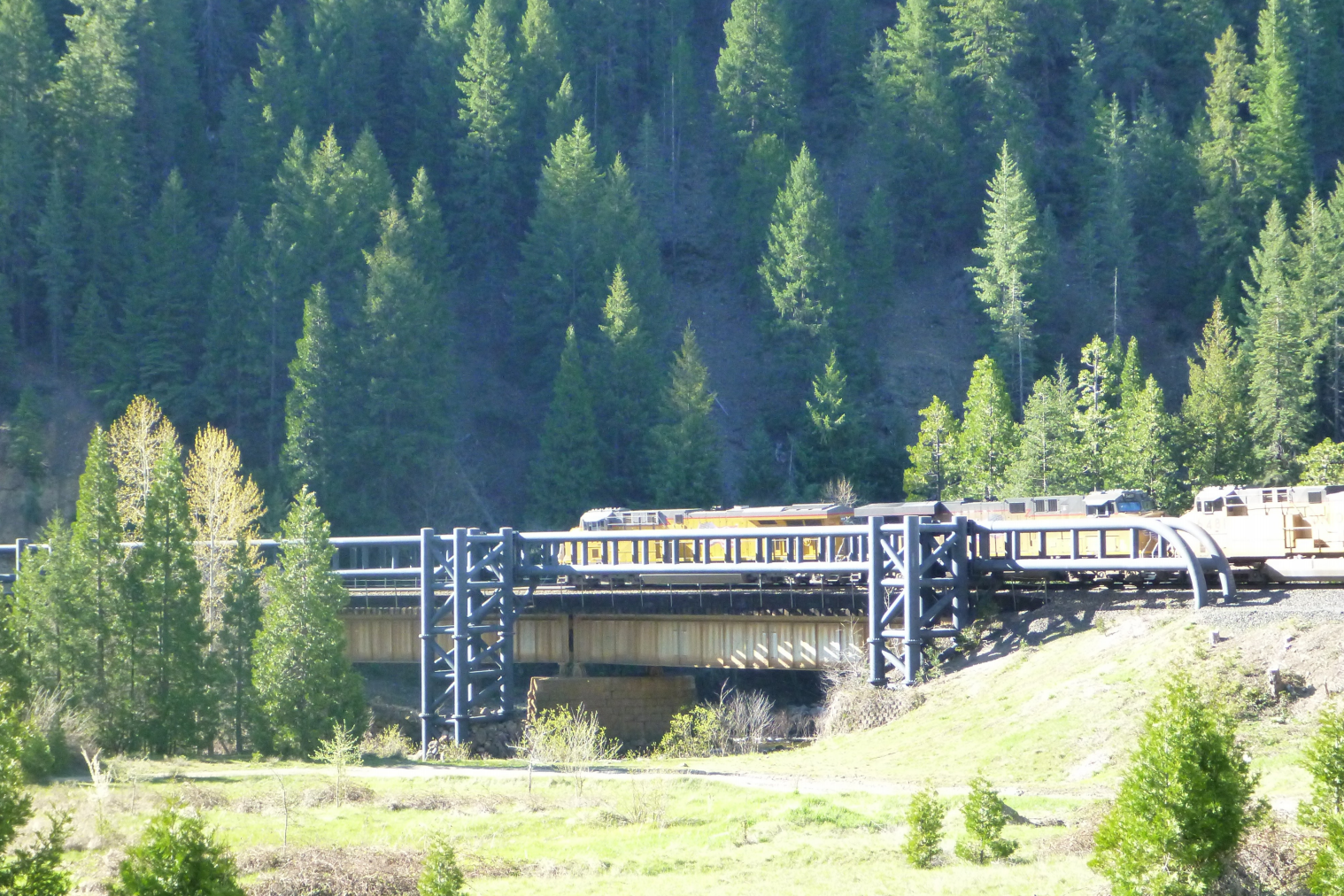 Train on Cantara Bridge 2013