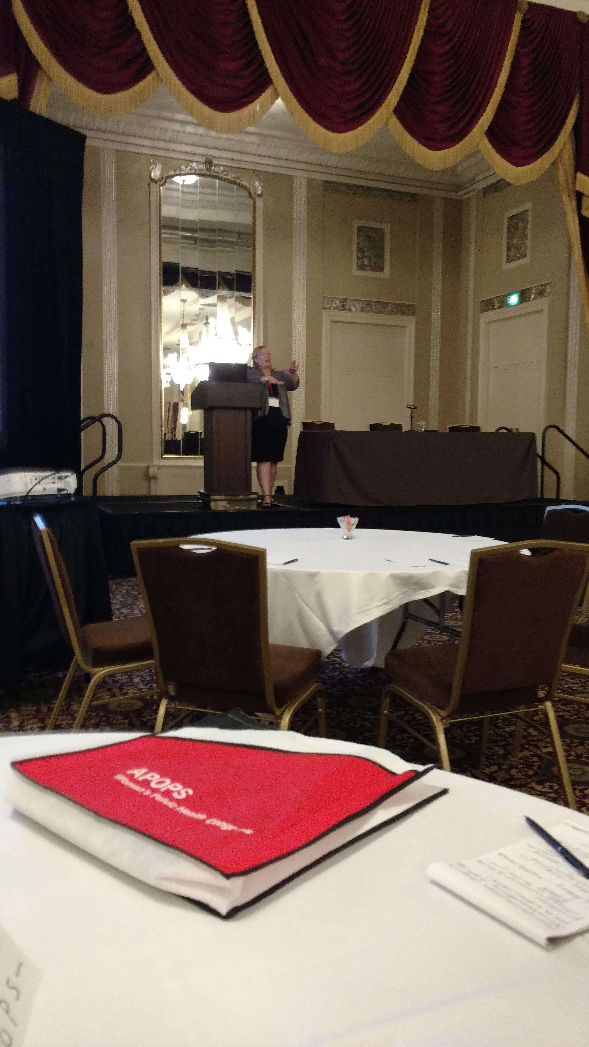 Susan speaking 2.jpg