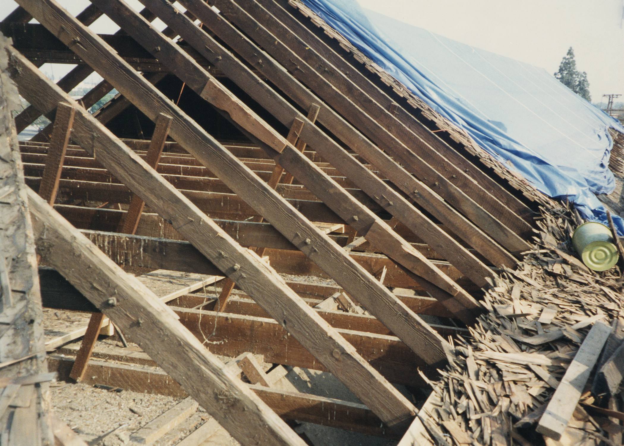Roof structure showing old rafters from previous restoration efforts.jpg