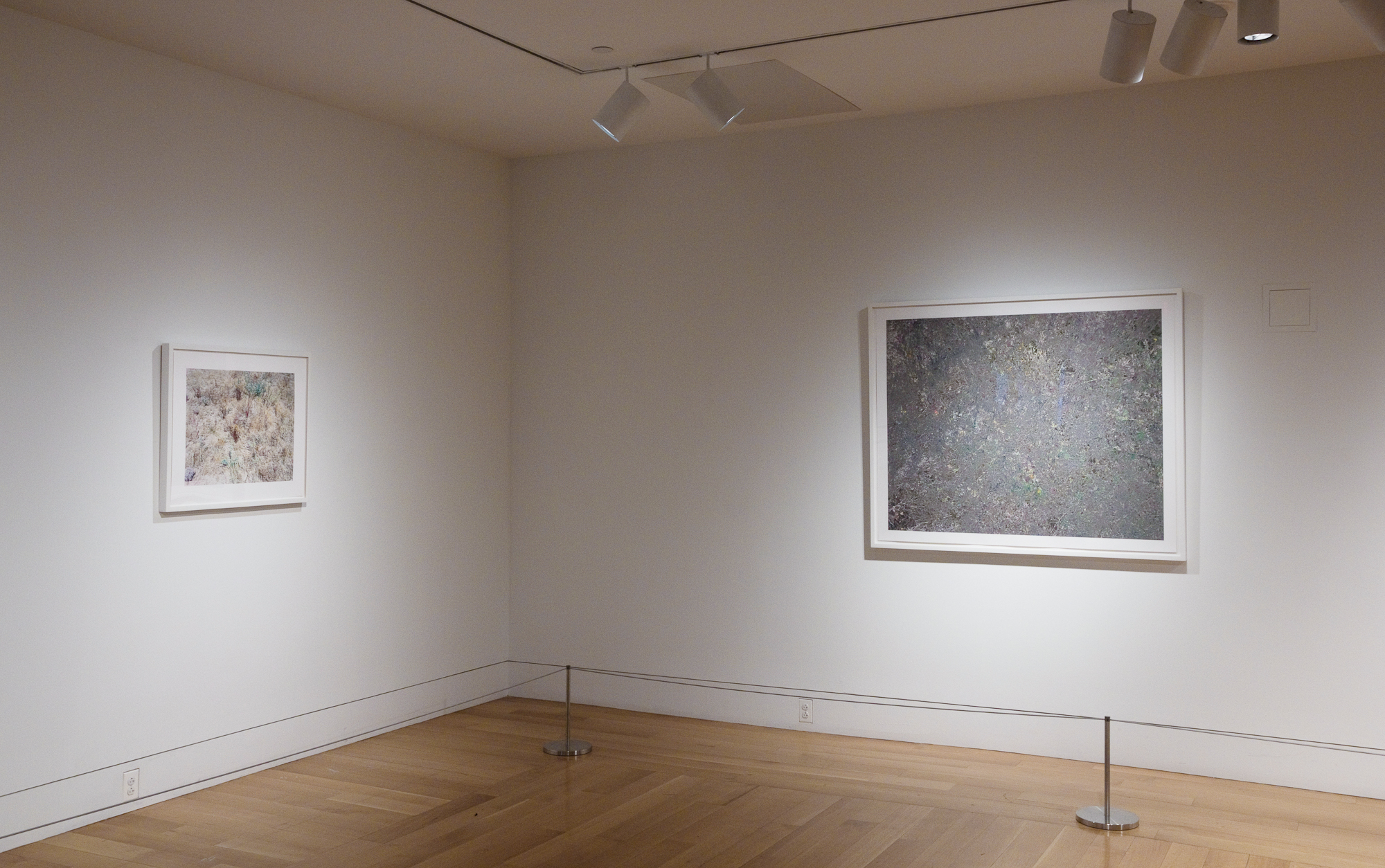 Installation view from the exhibition here. at the Pennsylvania Academy of the Fine Arts in 2011.