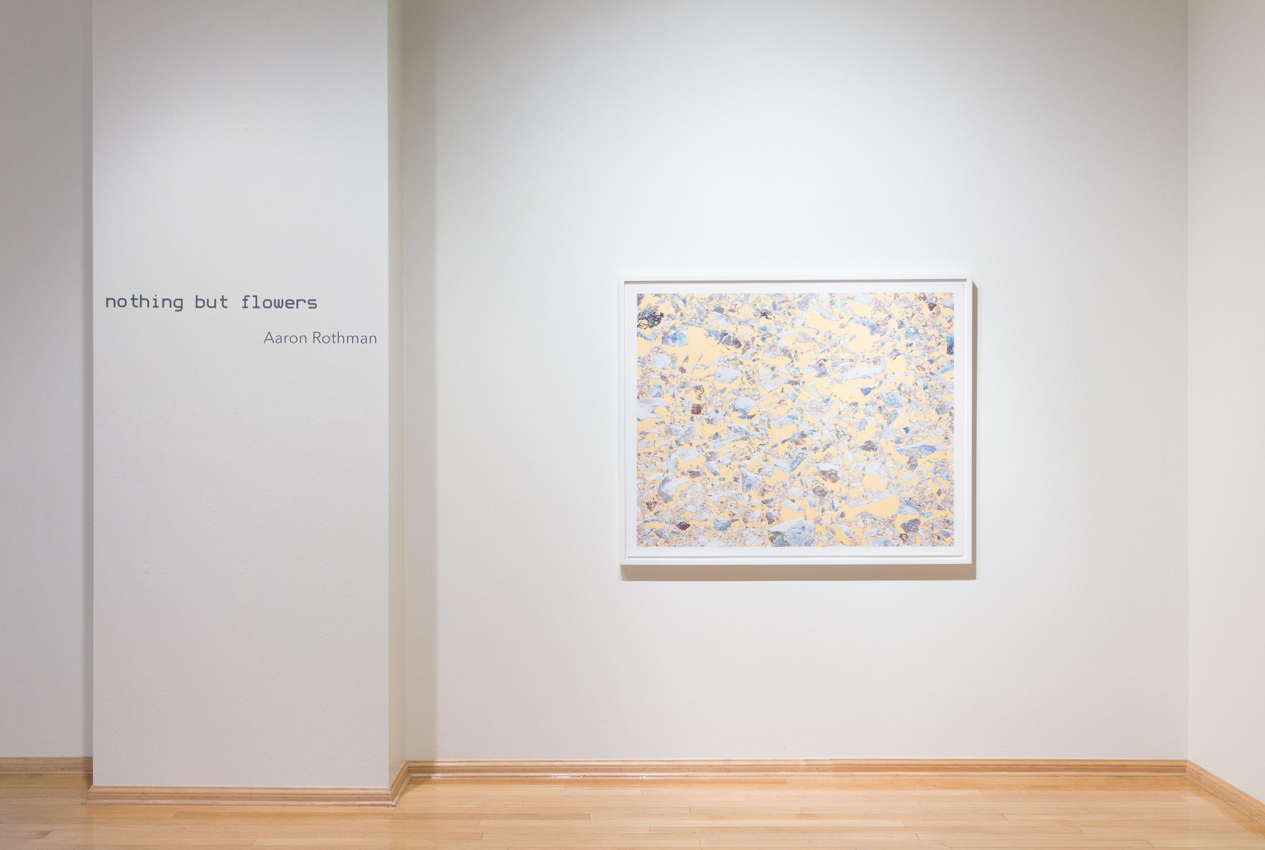 Nothing But Flowers, Stark Gallery, Phoenix, AZ, 2015