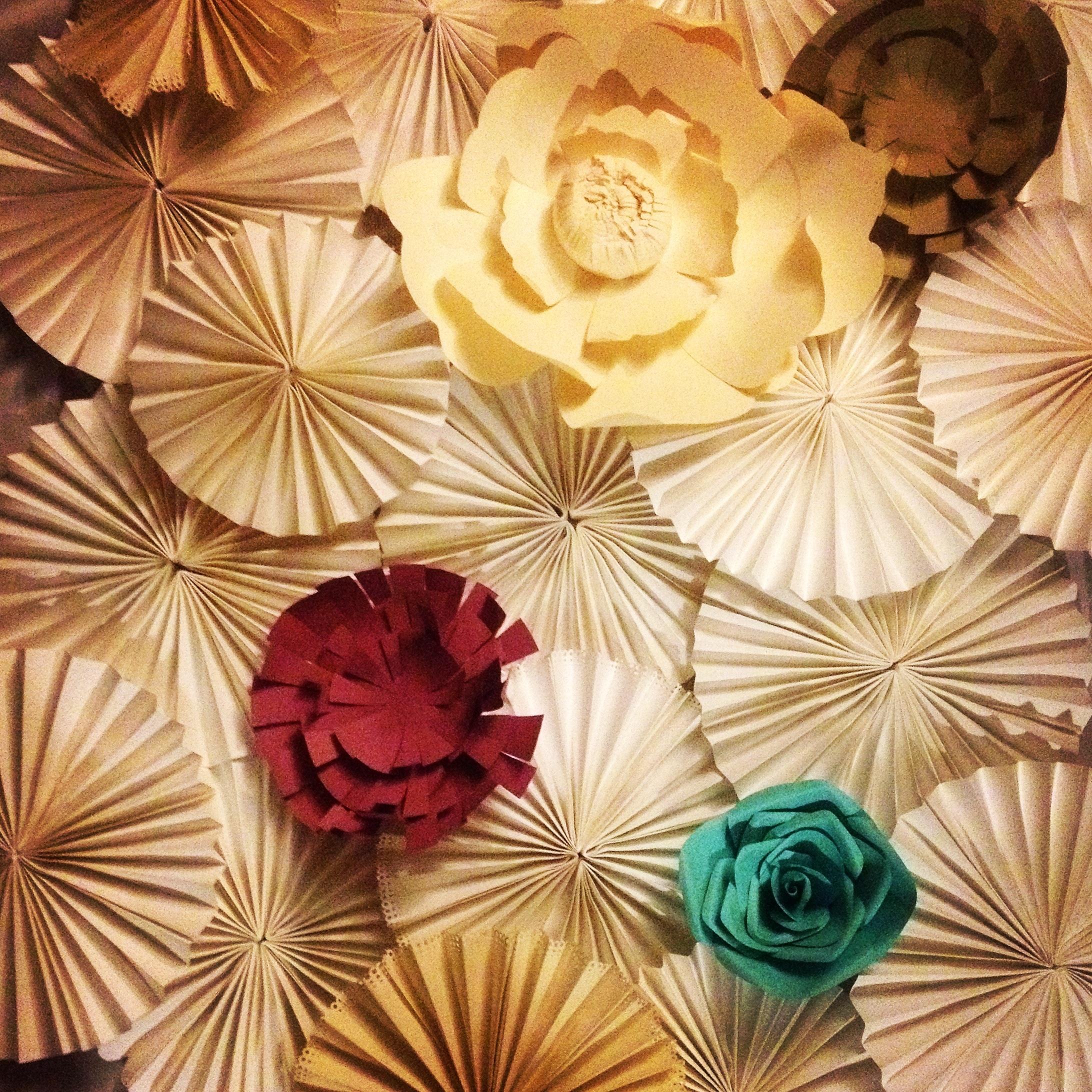 paper fan backdrop edmonton