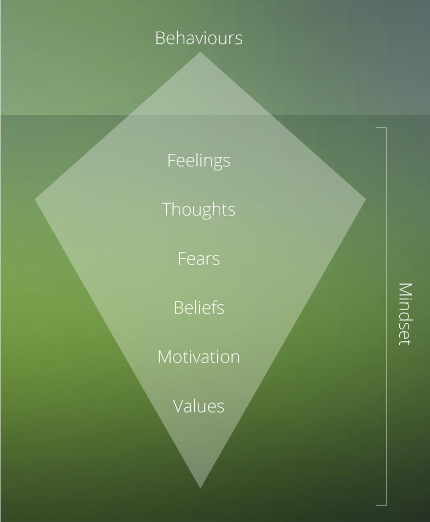 behaviours-iceberg.png