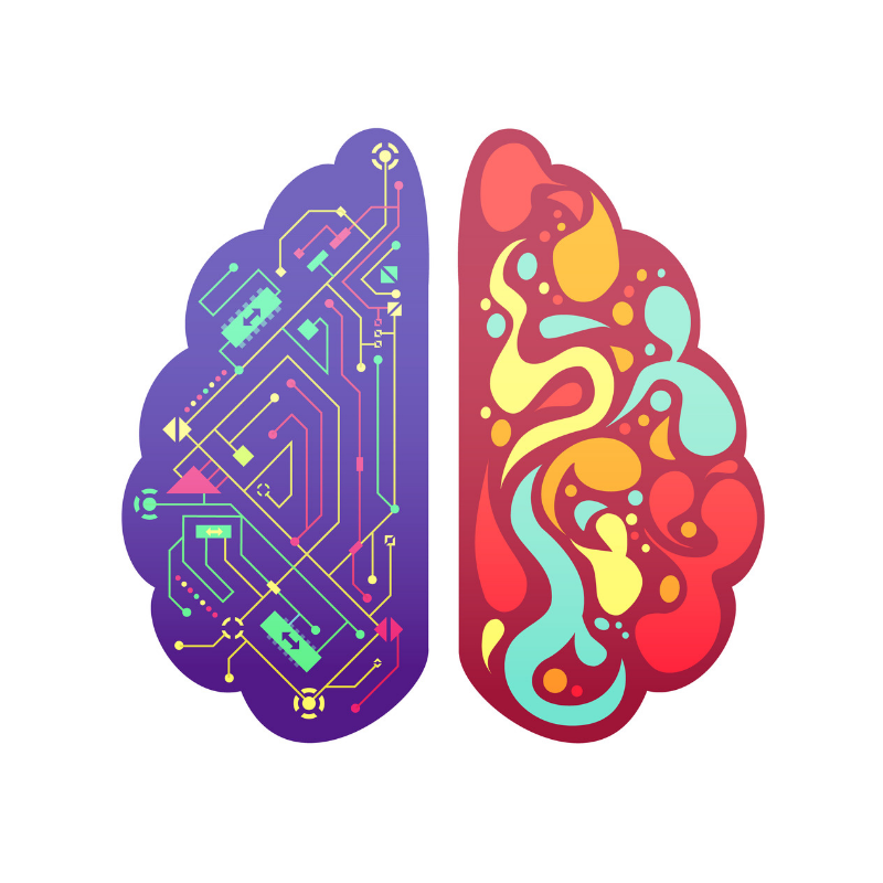 Brain colorful.png