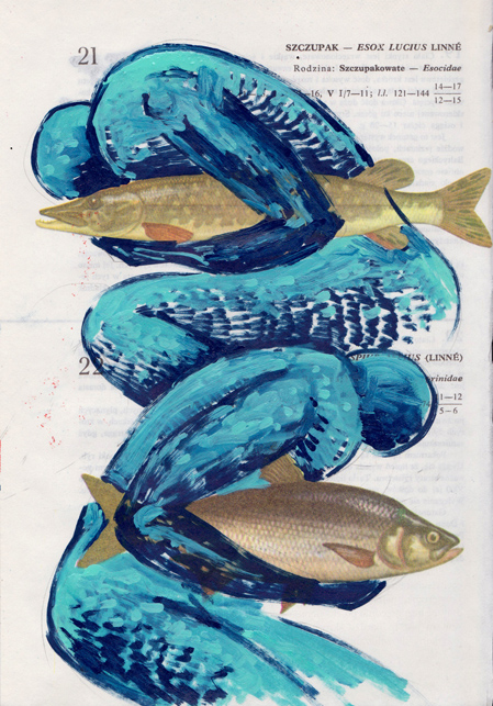 Poisson 3 , 2013, mixed media collage