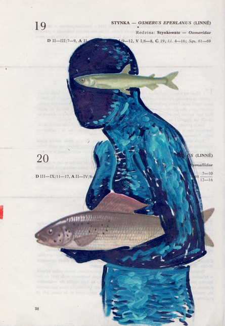Poisson 8 , 2013, mixed media collage