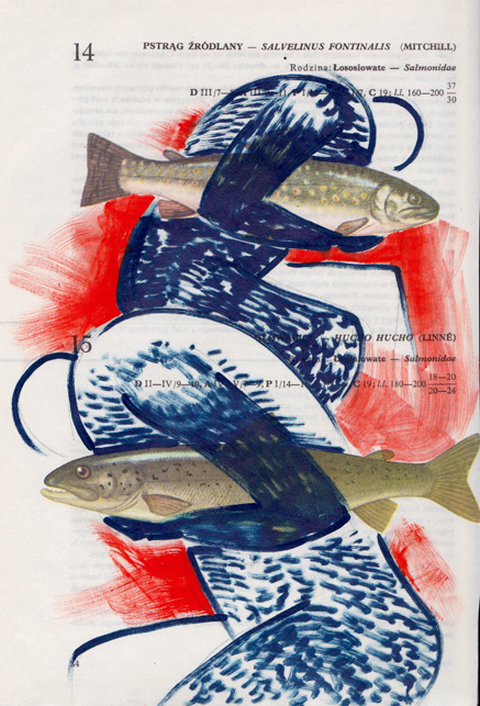 Poisson 13 , 2013, mixed media collage