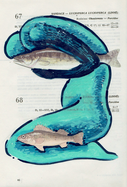 Poisson 14 , 2013, mixed media collage