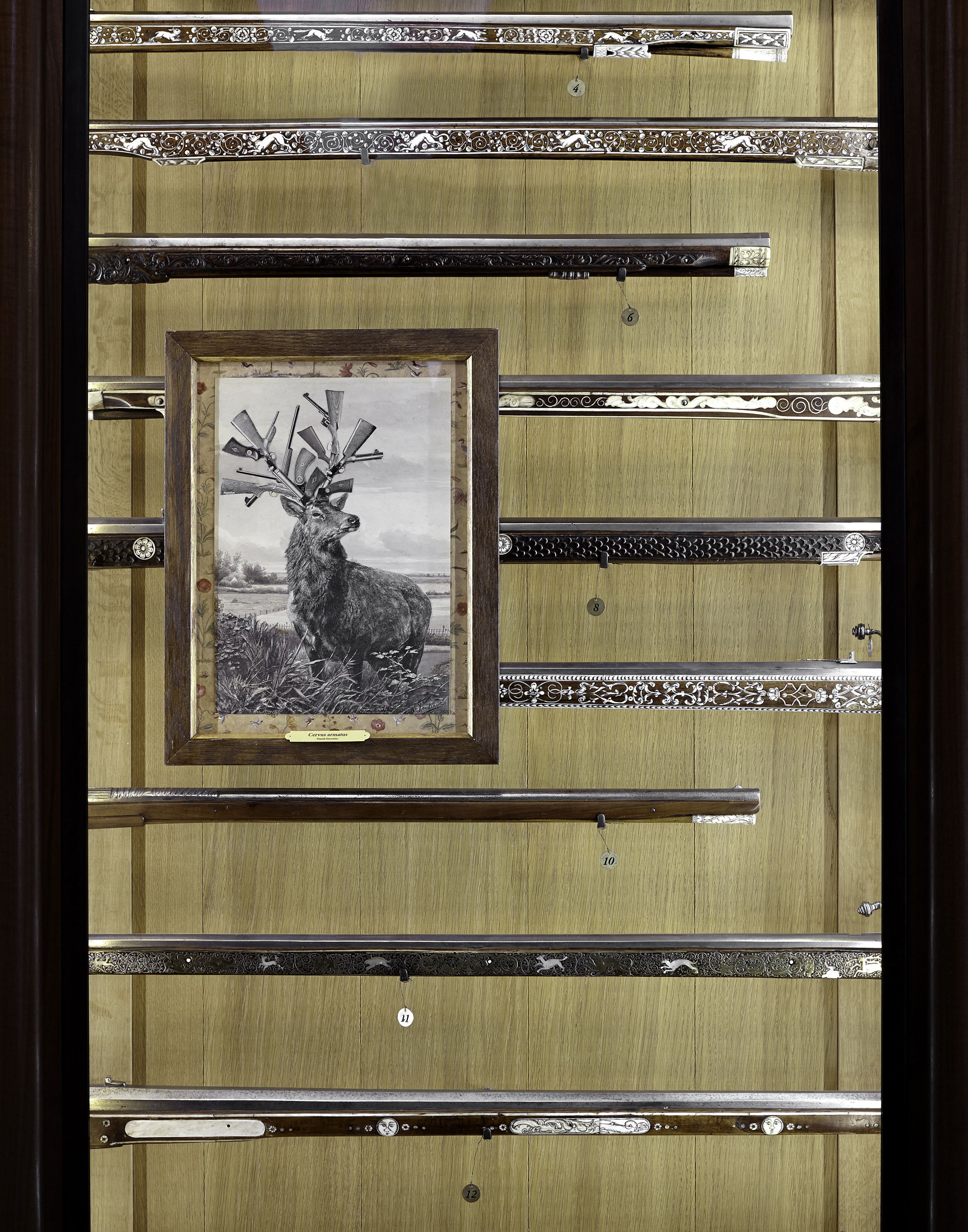 Cervus armatus - Horowitz - 28 x 38 -2_Depasquale.jpg
