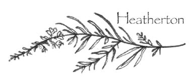 Heatherton_Tori+Sparks_gardening.jpg
