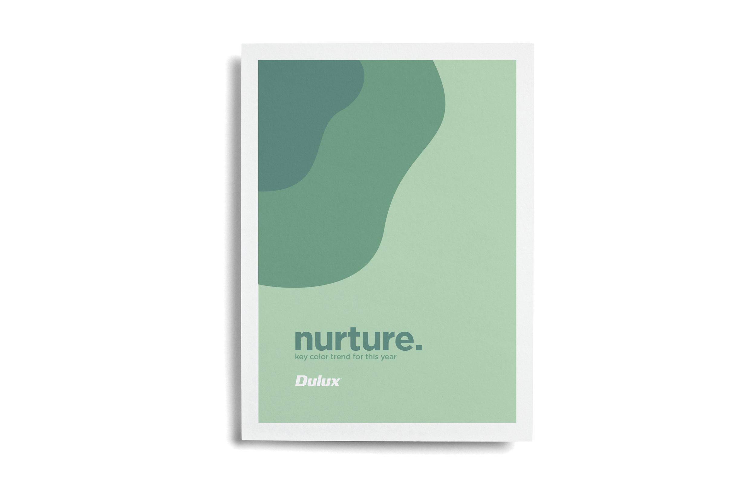 Dulux Paint Samplers