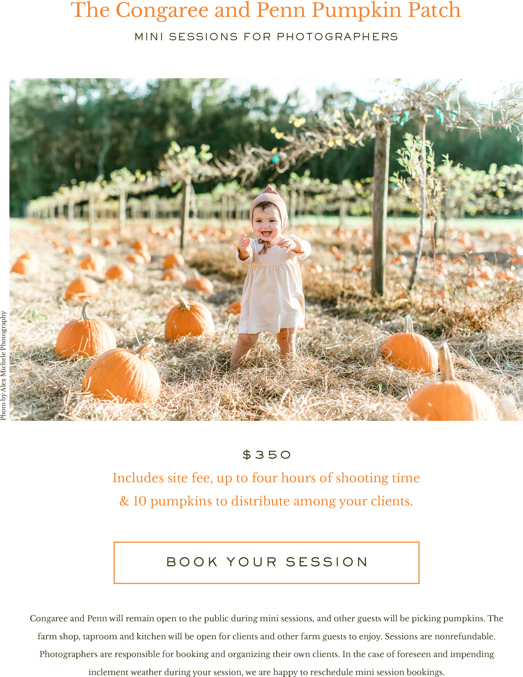 PumpkinMiniSessions.png