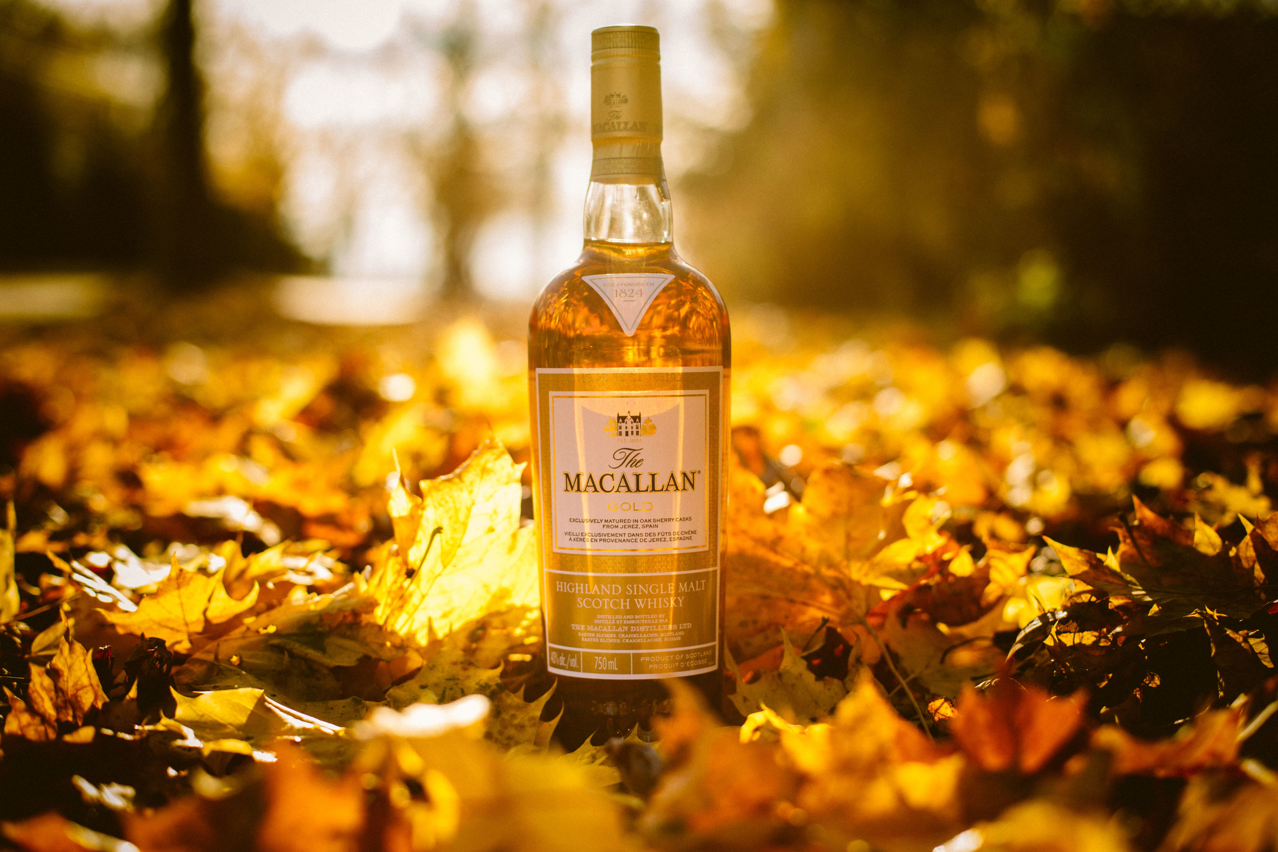 The Macallan GOLD Highland Single Malt Whiskey