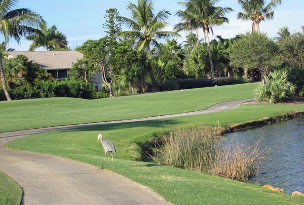 golfDunesWeb.jpg