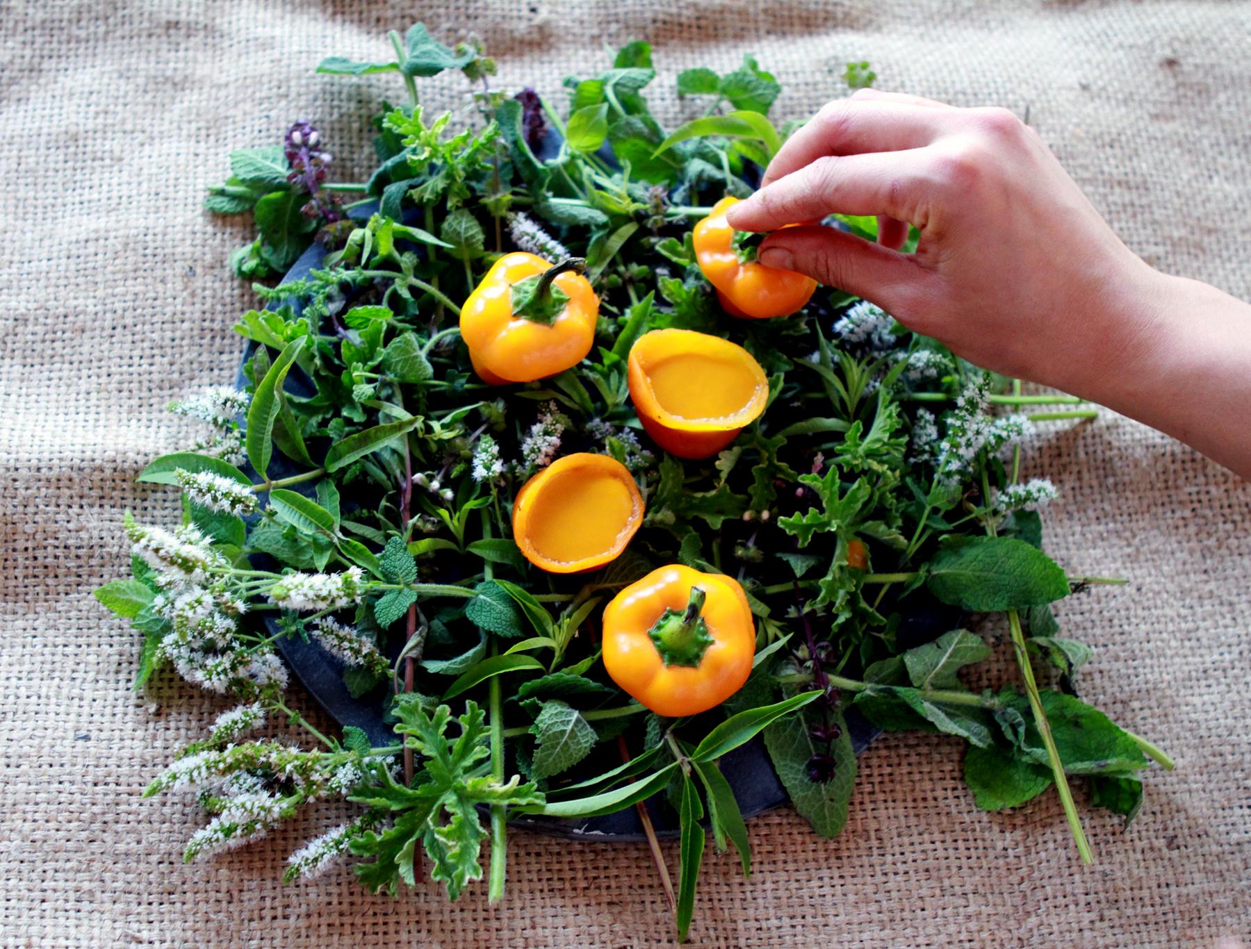 ANATOMY OF A DISH: SUMMER  A farmer-chef collaboration.  Read>>