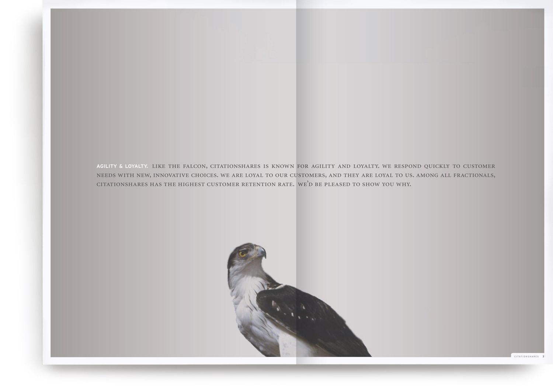 SC_Brochure_3D_ALT1_1.jpg
