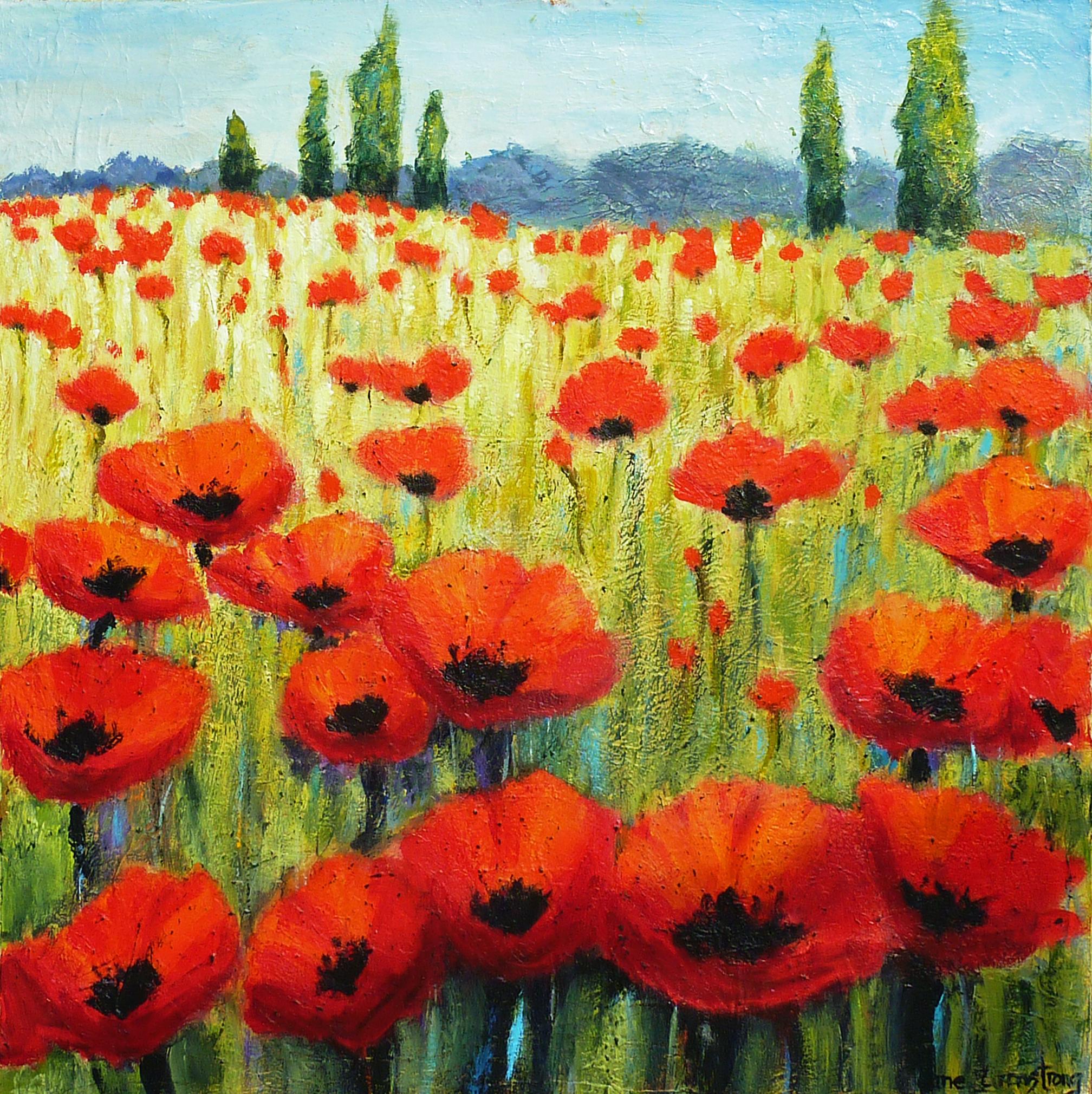 Poppy Field in Languedoc Acrylic 36 x 36