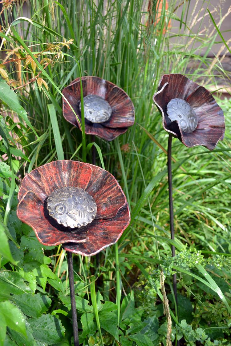 Poppies - Longstem