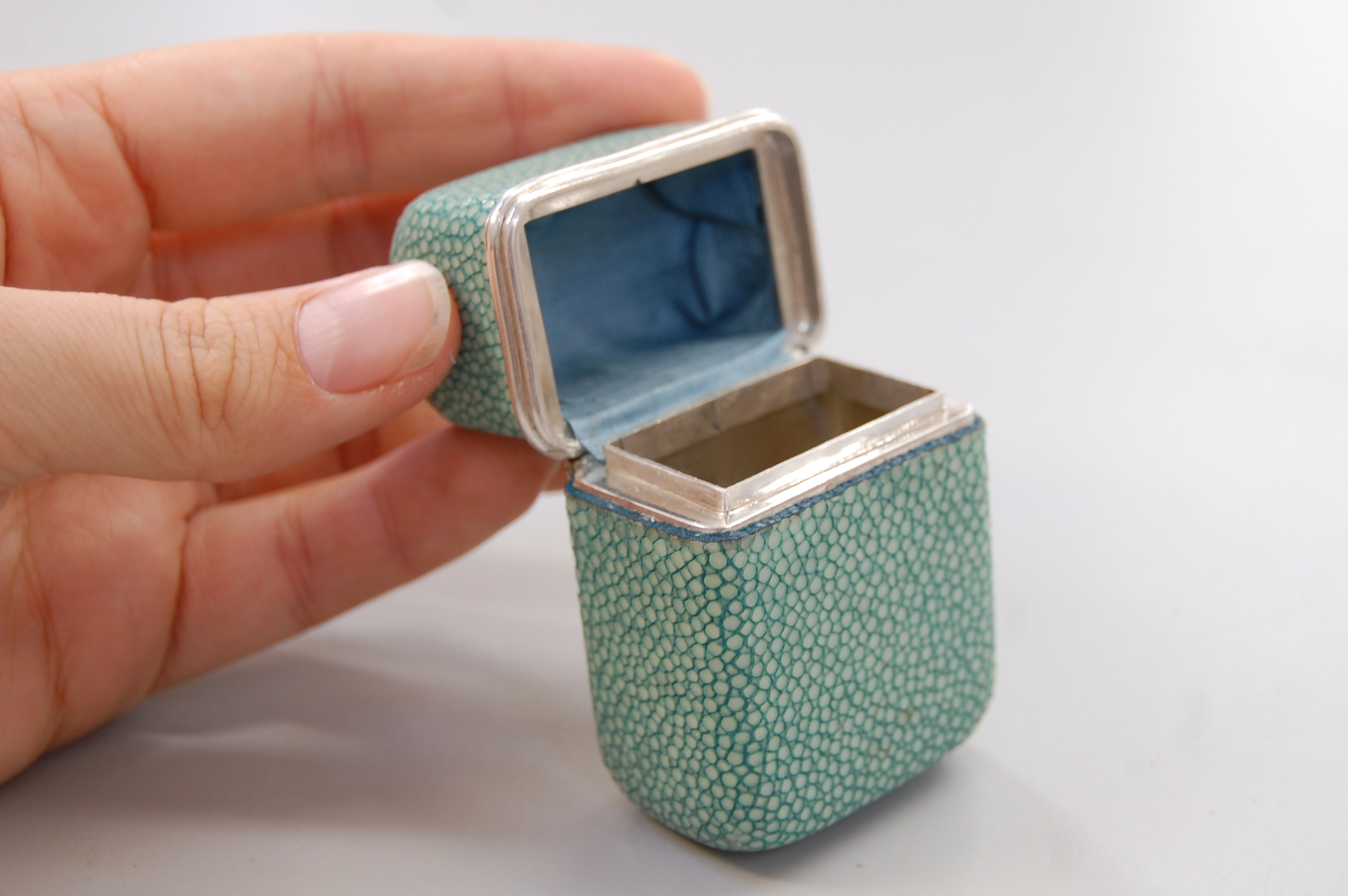 Shagreen box 24.jpg