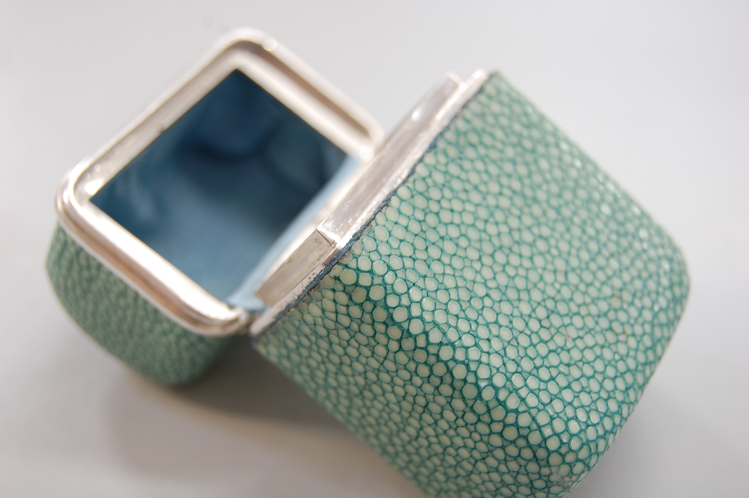 Shagreen box 26.jpg