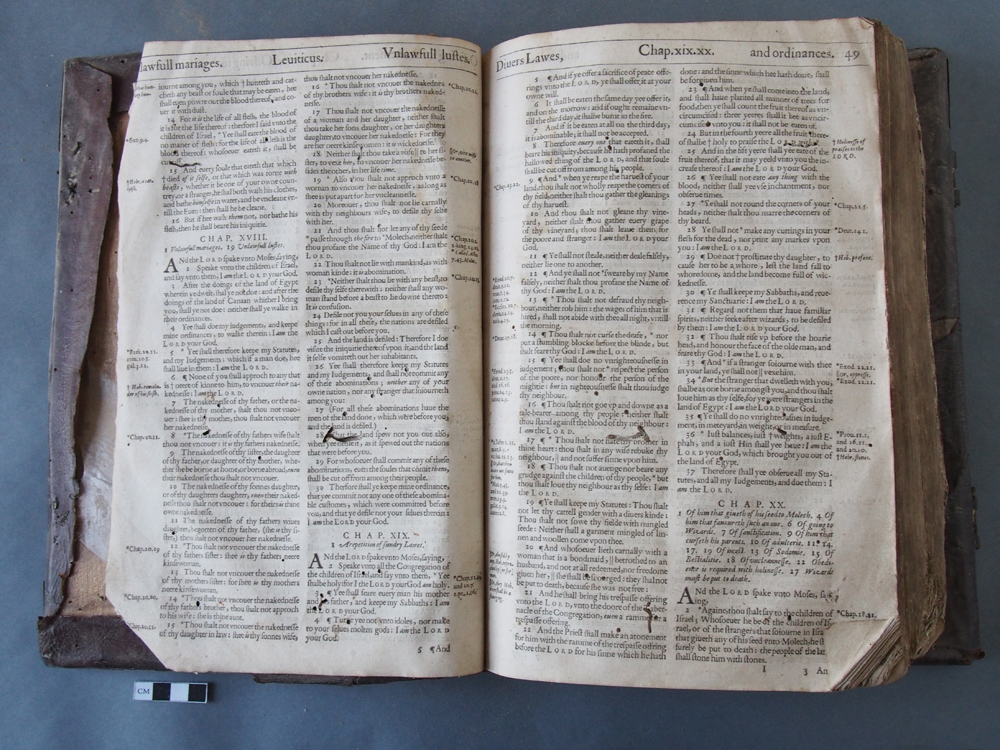 Forgue Bible BT 5.jpg
