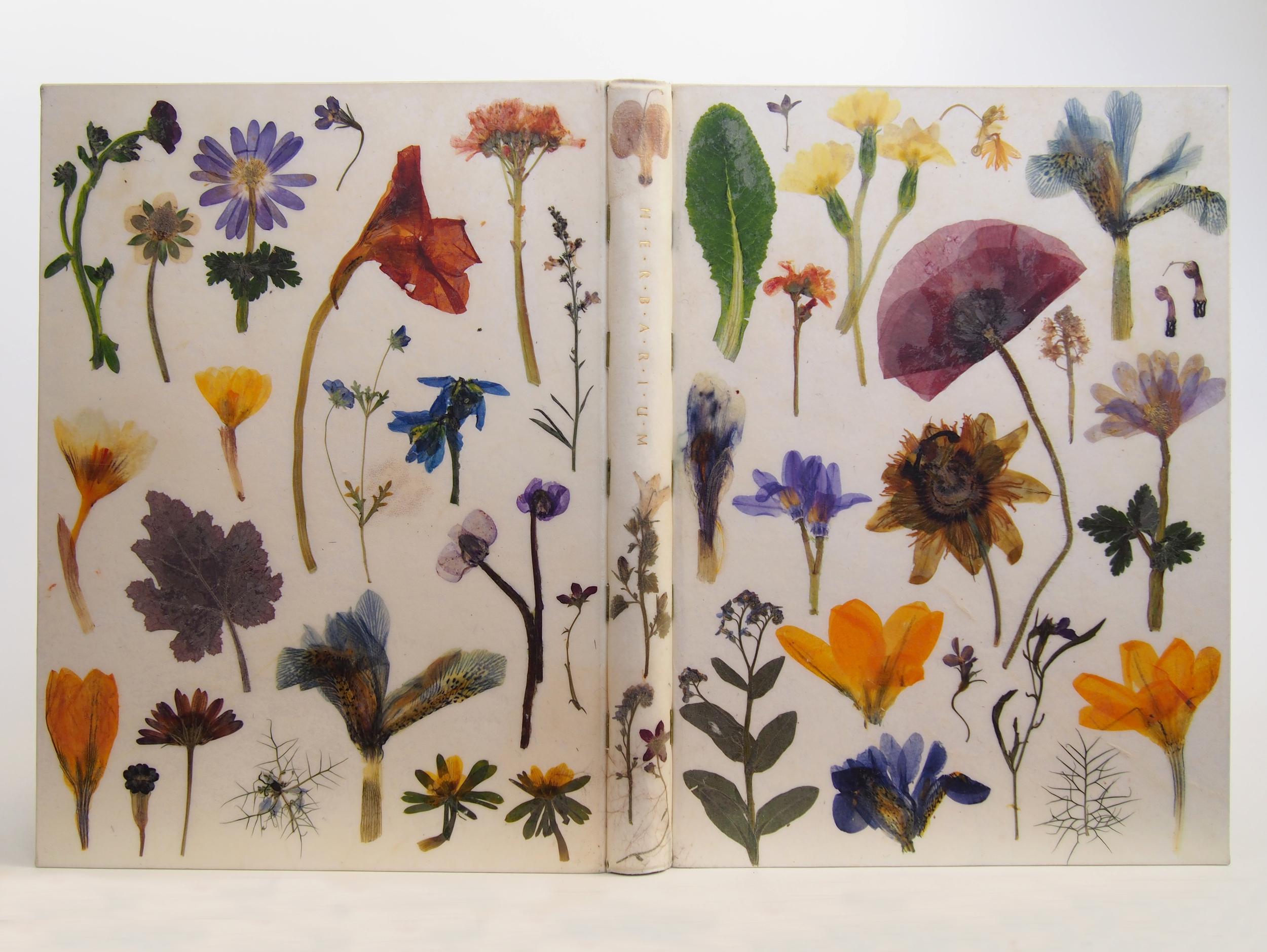 Herbarium 14.jpg
