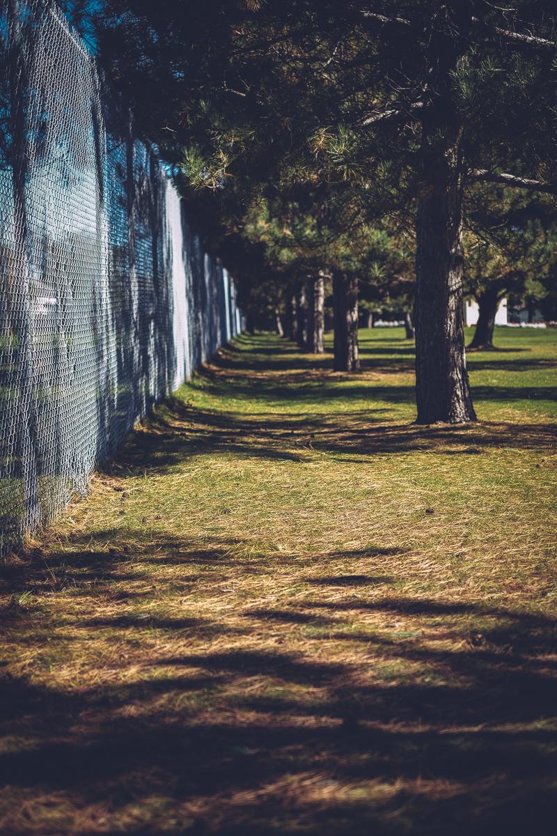 friendship_gardens_10011522.jpg