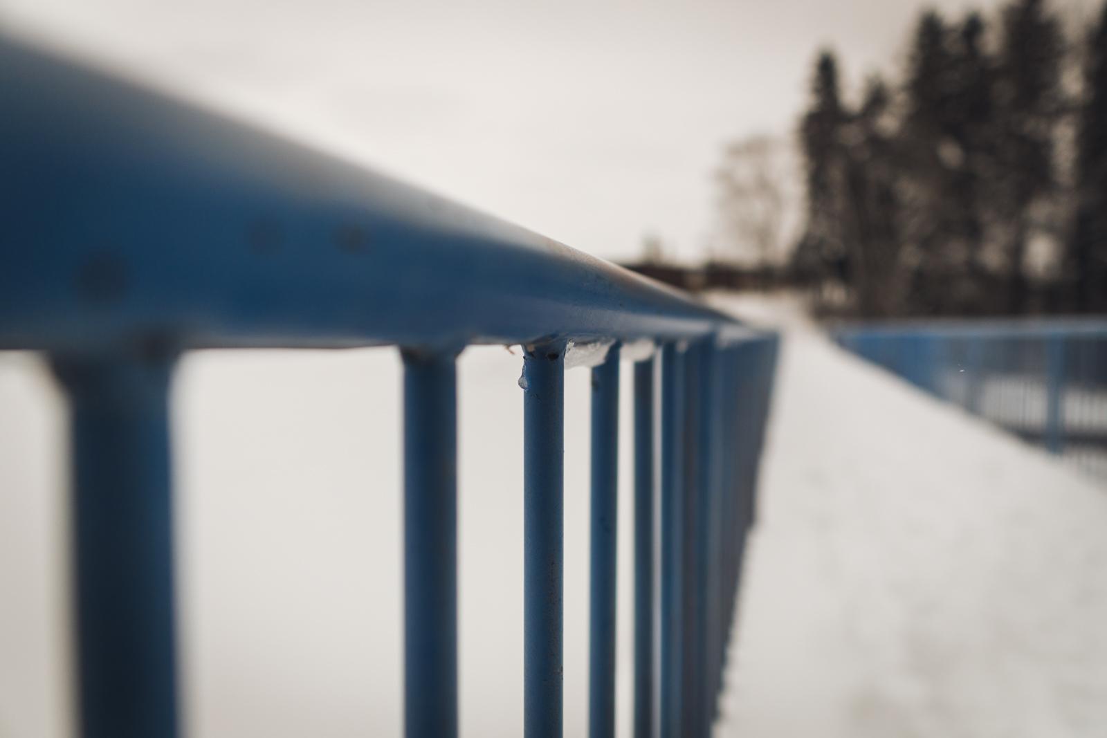 lakeheadwalk-sony-012319-blog-11.jpg