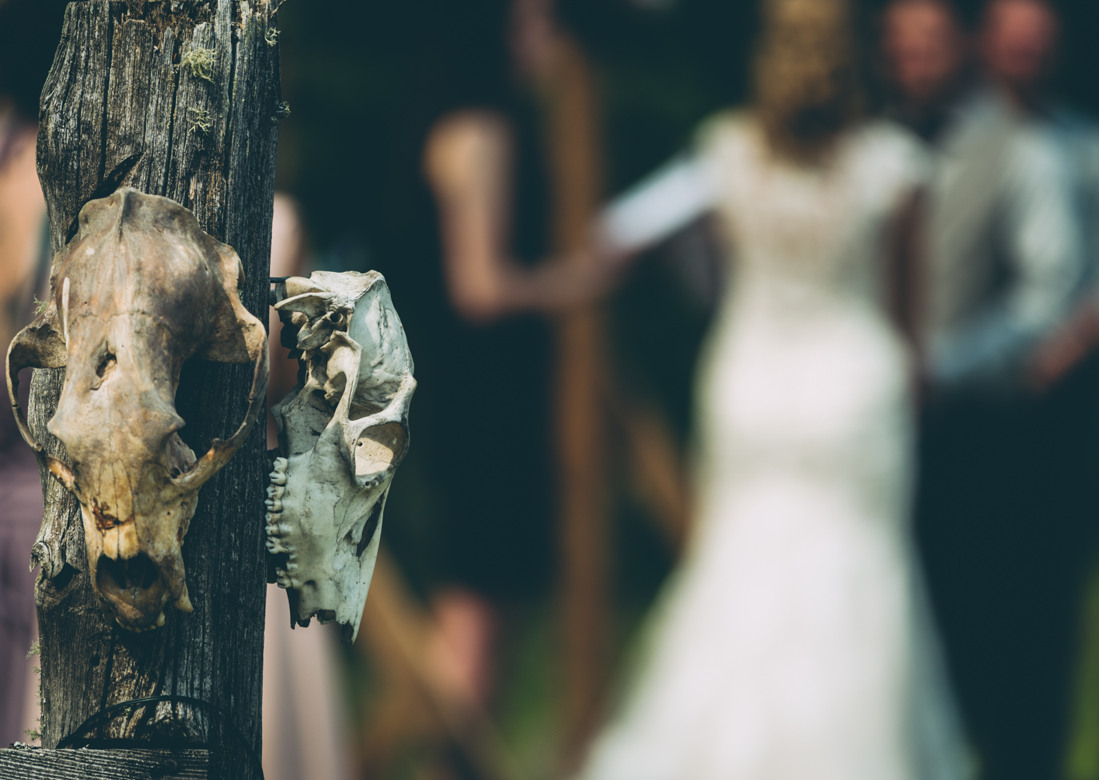 top-wedding-photos-2018-blog-33.jpg