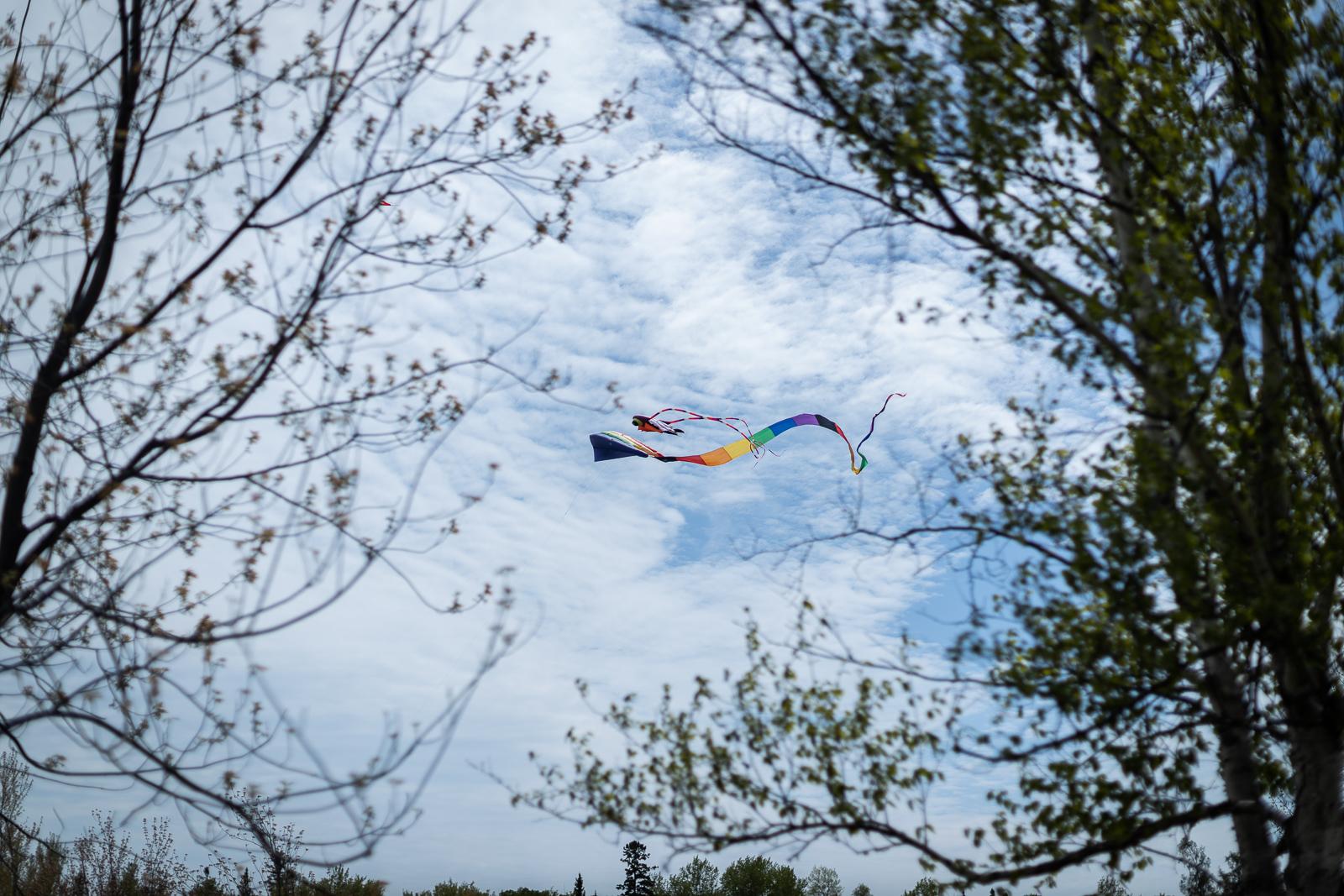 kite-festival-2019-blog-31.jpg