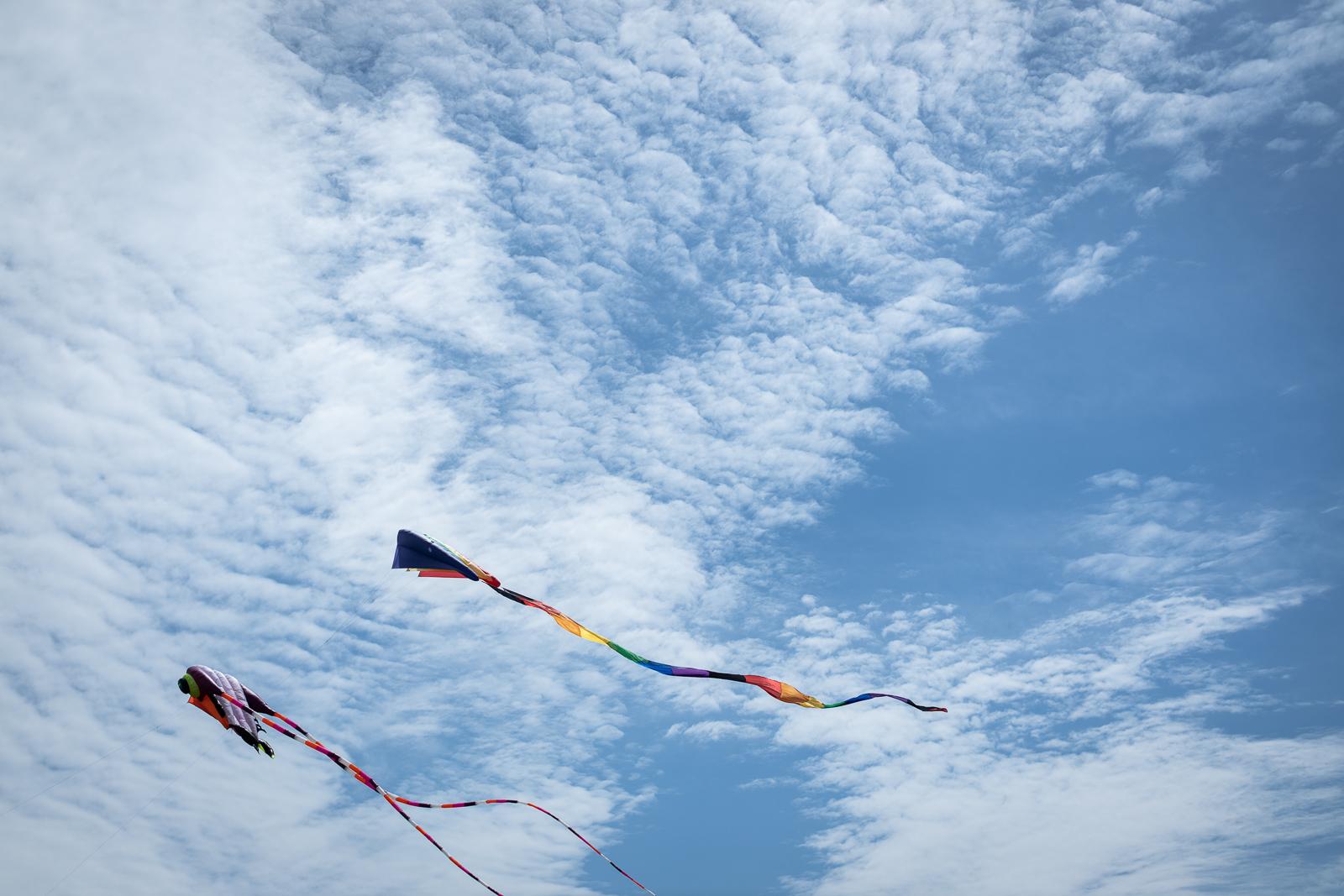 kite-festival-2019-blog-33.jpg