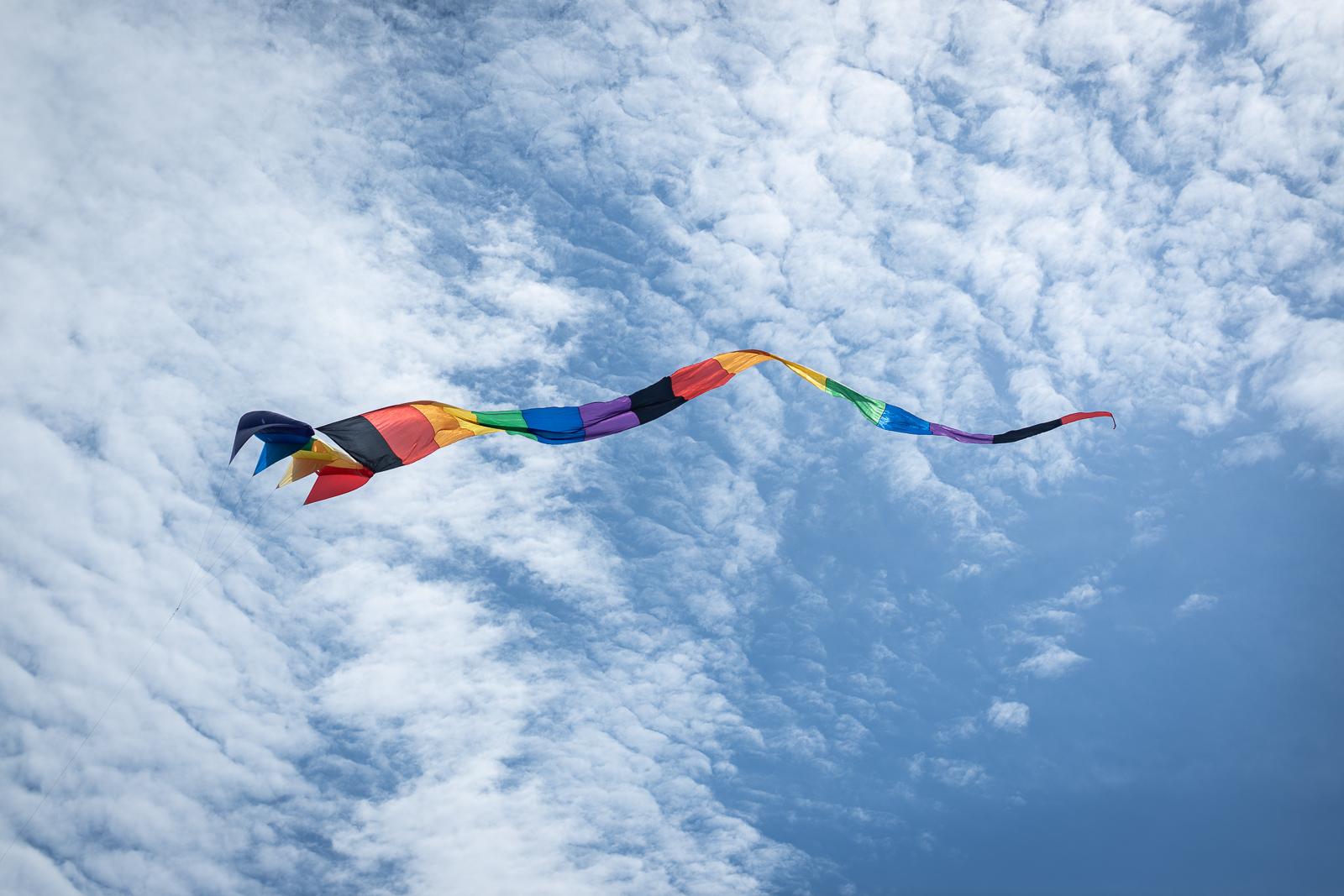 kite-festival-2019-blog-36.jpg