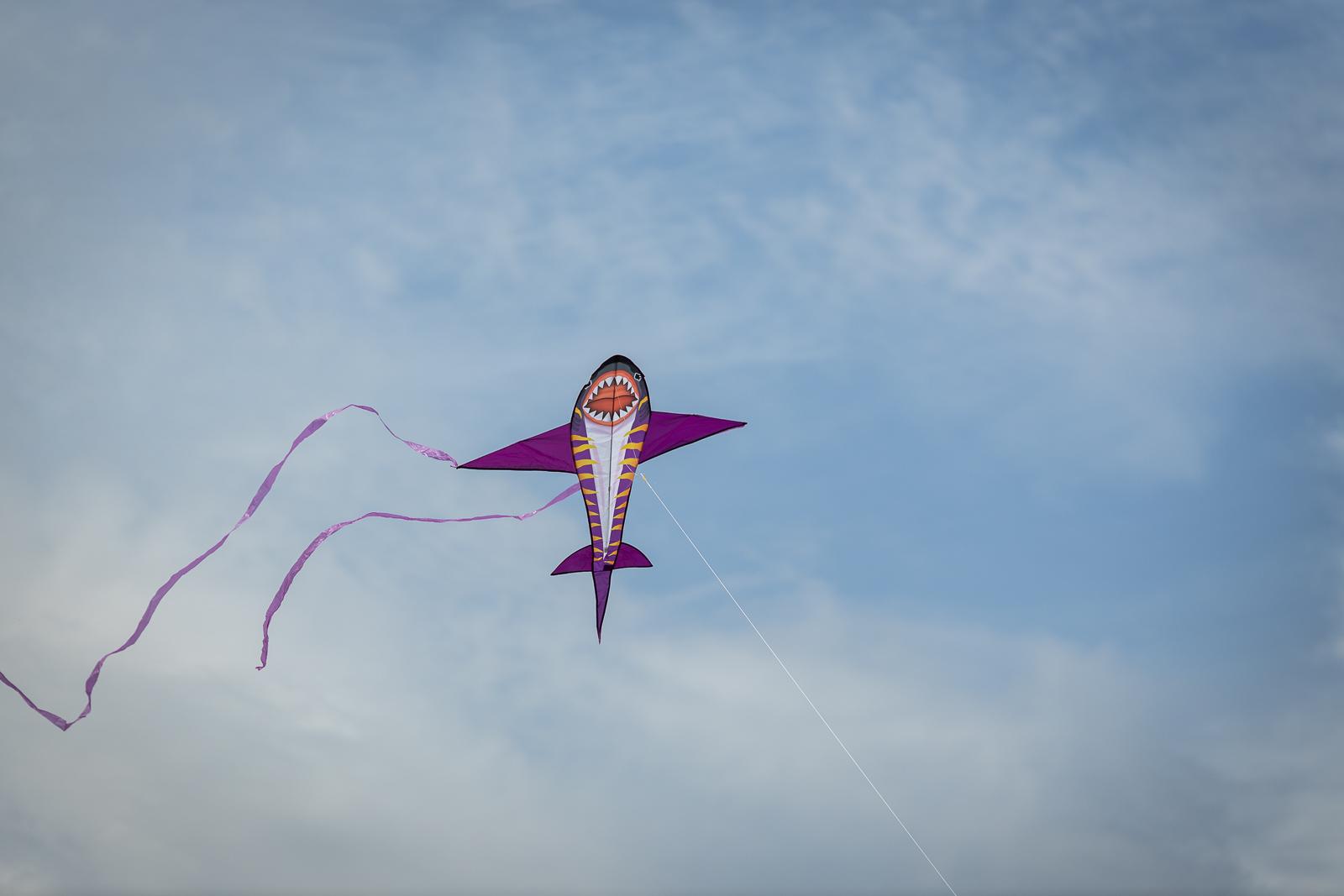kite-festival-2019-blog-54.jpg