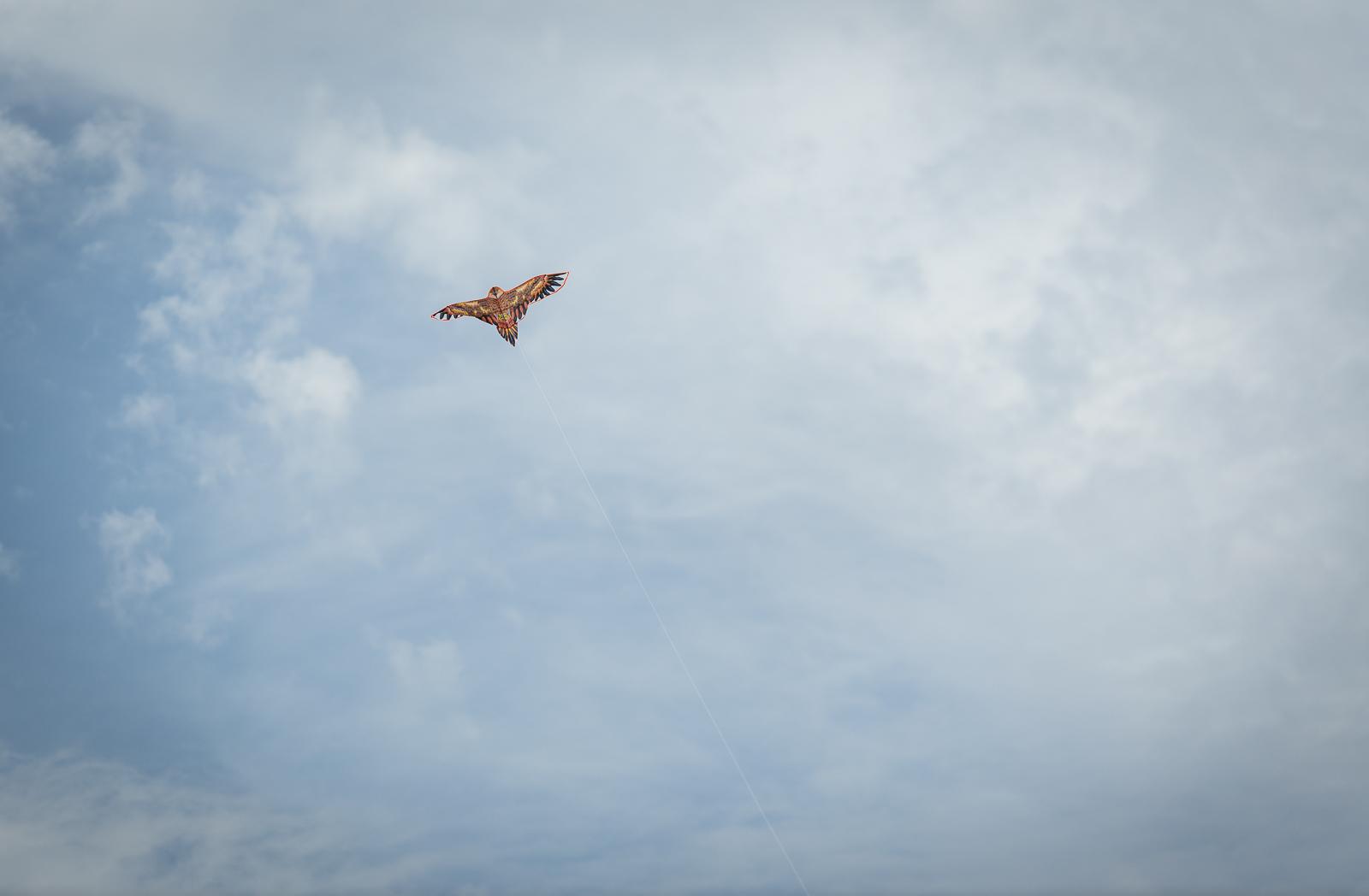 kite-festival-2019-blog-56.jpg