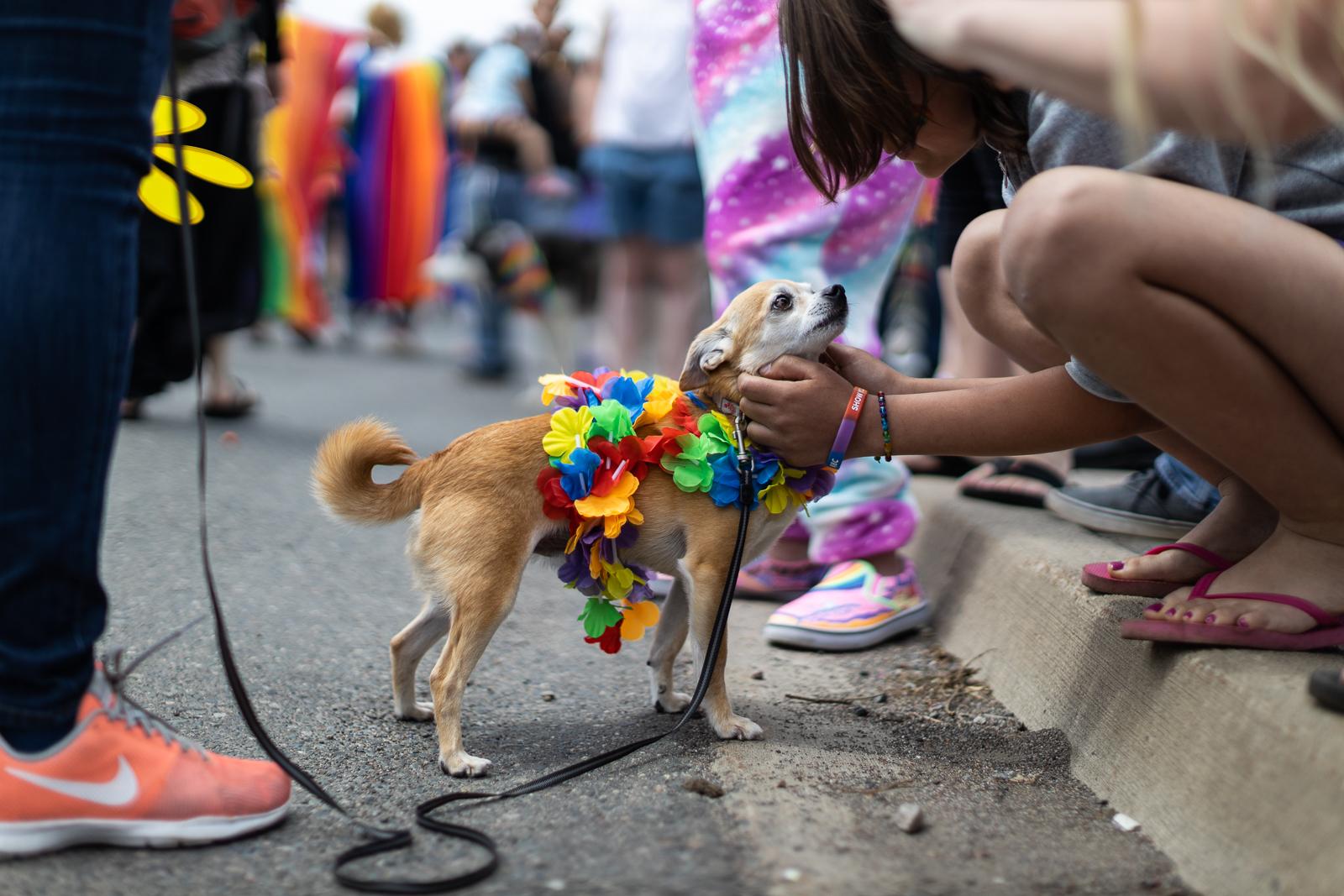 pride-parade-2019-fb-160.jpg