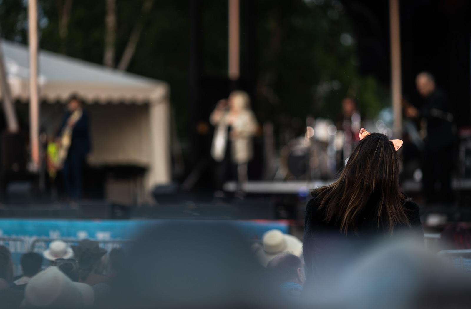 bluesfest-2019-blog-210.jpg
