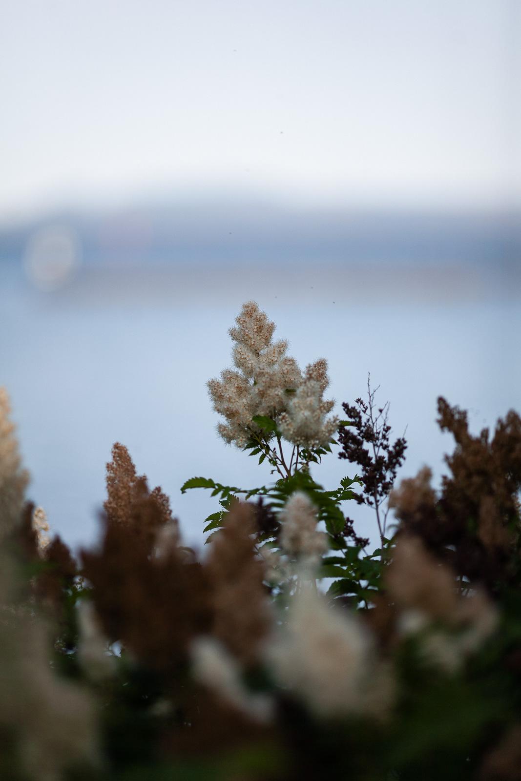evening-at-marina-blog-16.jpg
