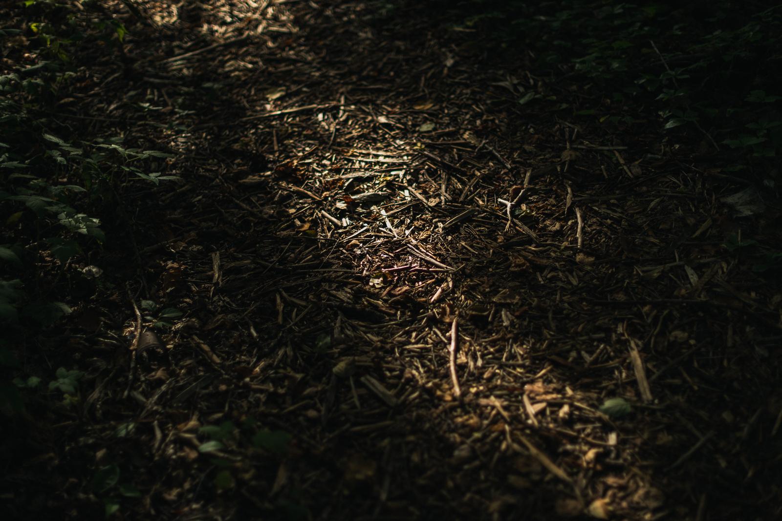 lu-walk-september5th-blog-71.jpg