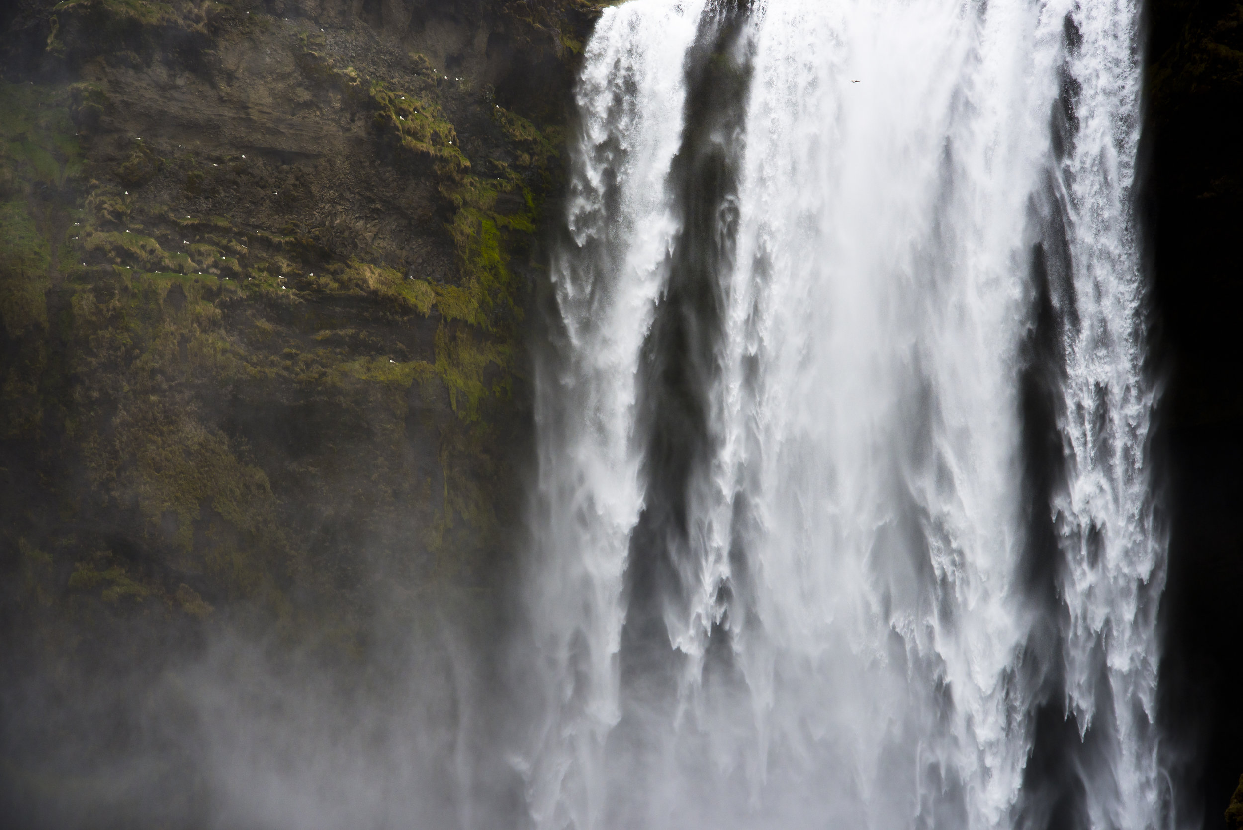 BBP-Iceland_AU-50.jpg